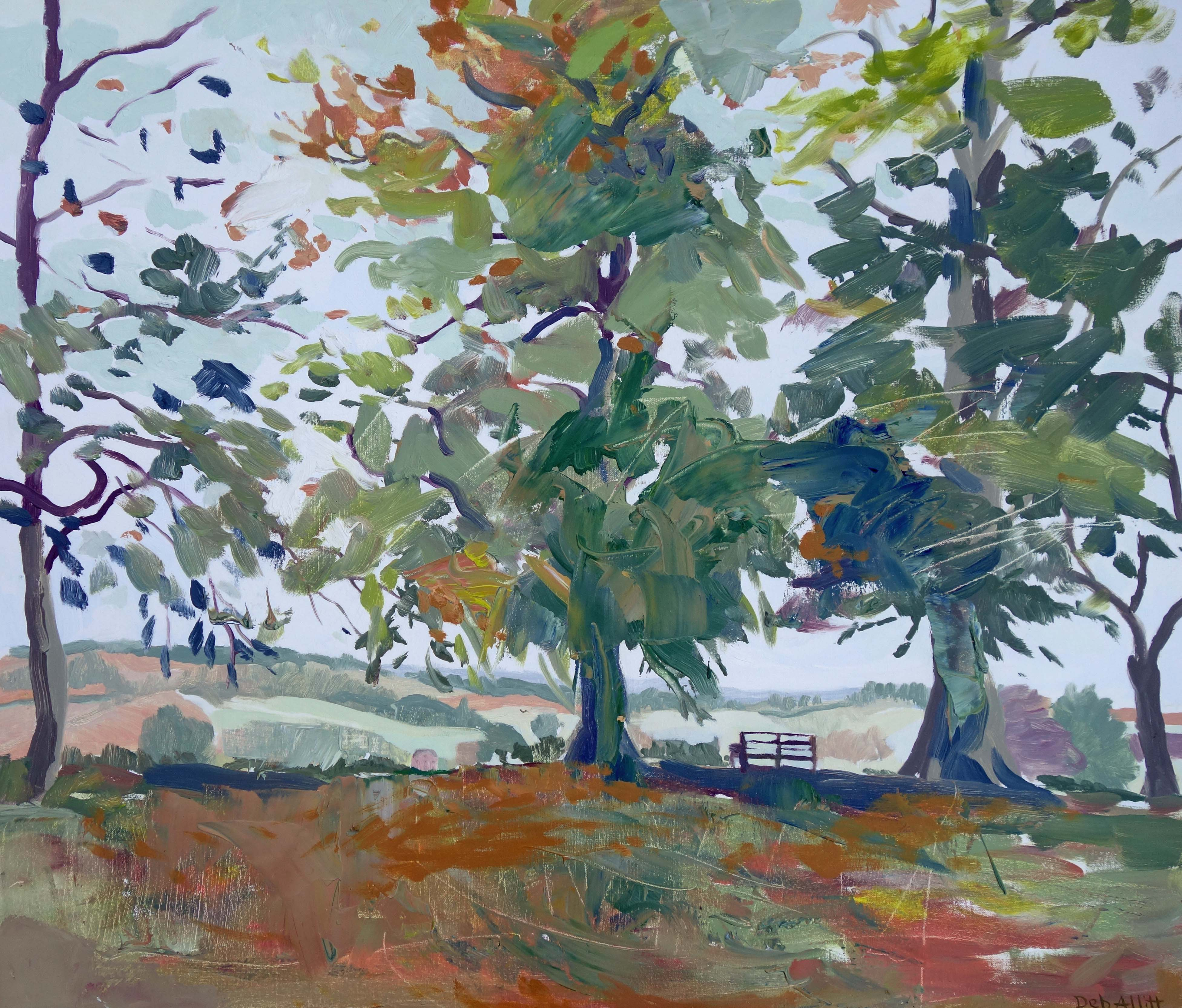 View of Kedleston Fields Beyond the Trees. Oil on canvas. 60 x 70 cm.